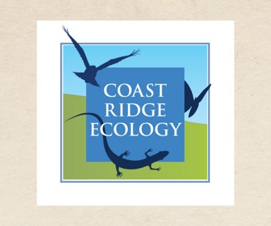 Coast Ridge Ecology – logo design