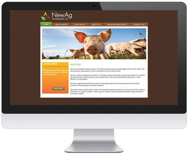 NewAg Development - website design for a renewable energy, waste management, agricultural products and environmental asset company