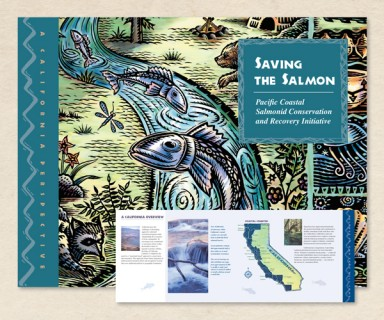 Salmonid Recovery Initiative - brochure design, writing and illustration