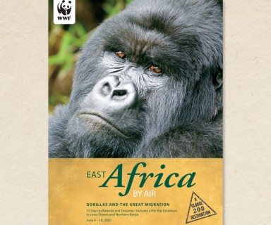 World Wildlife Fund - brochure design
